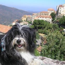 Voyage en Corse été 2009