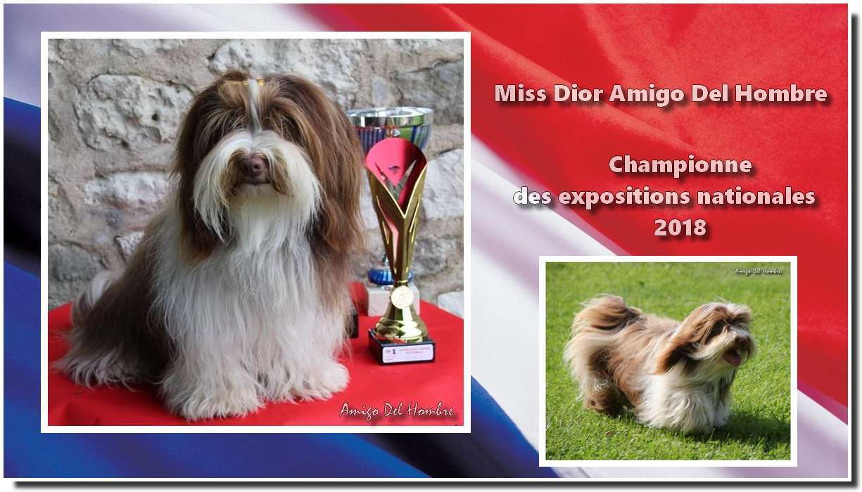 Dior championne 1