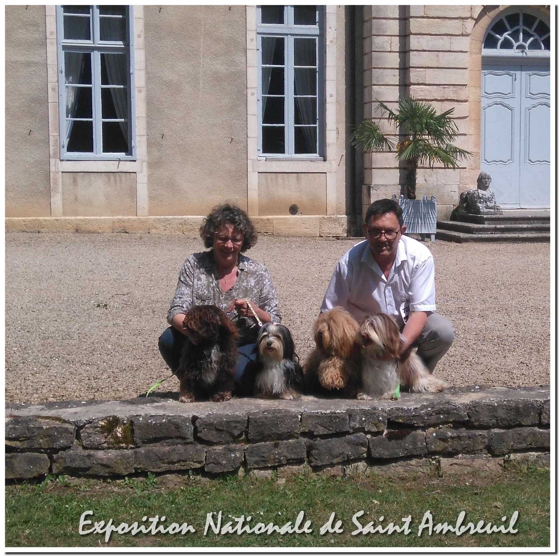 Saint ambreuil